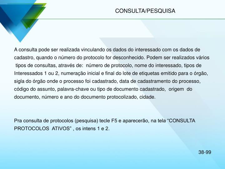 CONSULTA/PESQUISA