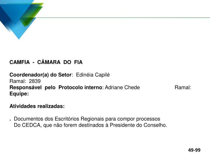 CAMFIA  -  CÂMARA  DO  FIA