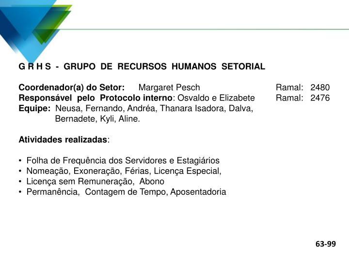 G R H S  -  GRUPO  DE  RECURSOS  HUMANOS  SETORIAL