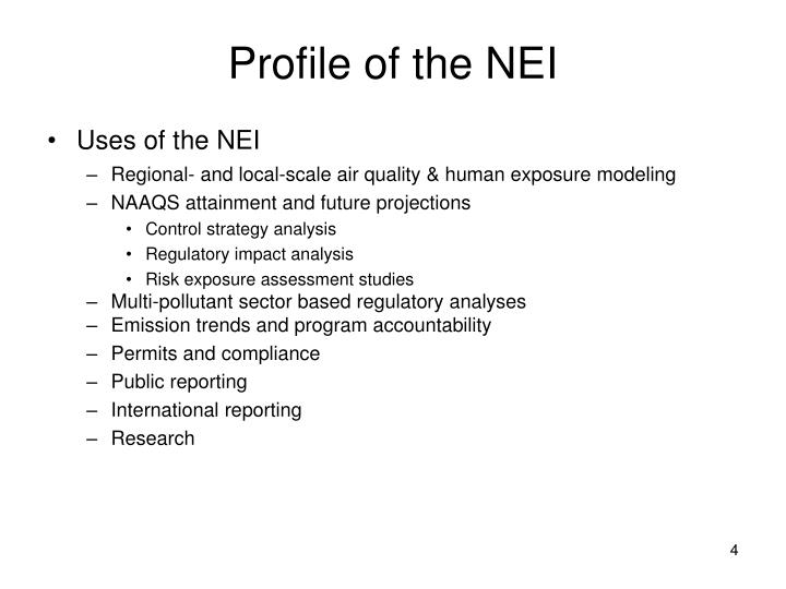 Profile of the NEI
