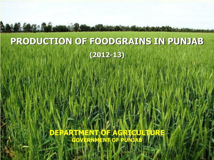 PRODUCTION OF FOODGRAINS IN PUNJAB