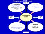 components of csf media