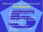 what should a written lep policy have five elements