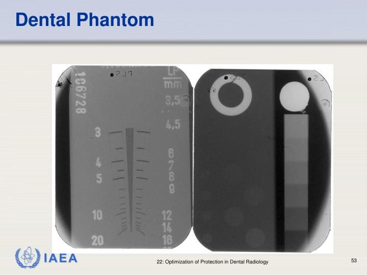 Dental Phantom