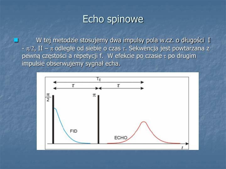Echo spinowe