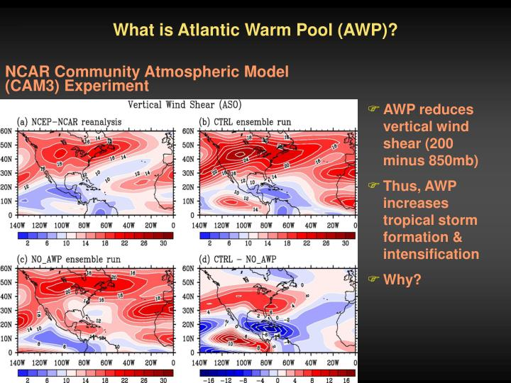 What is Atlantic Warm Pool (AWP)?