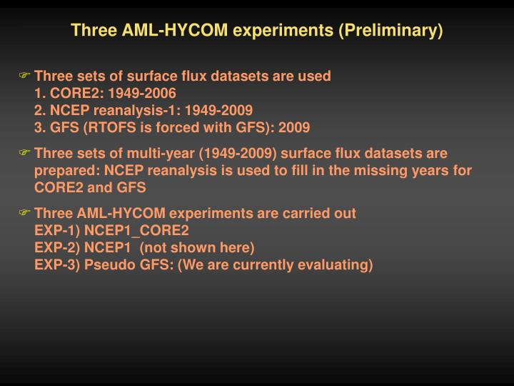 Three AML-HYCOM experiments (Preliminary)