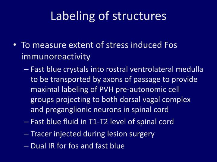 Labeling of structures