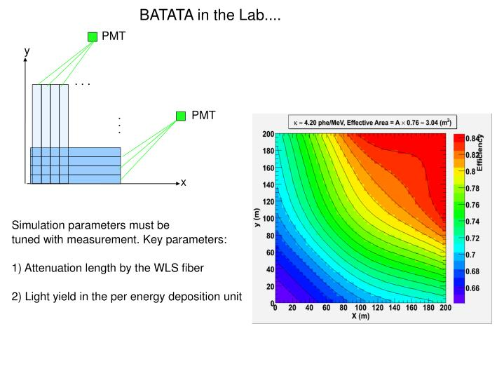 BATATA in the Lab....