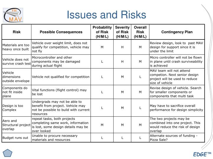 Issues and Risks