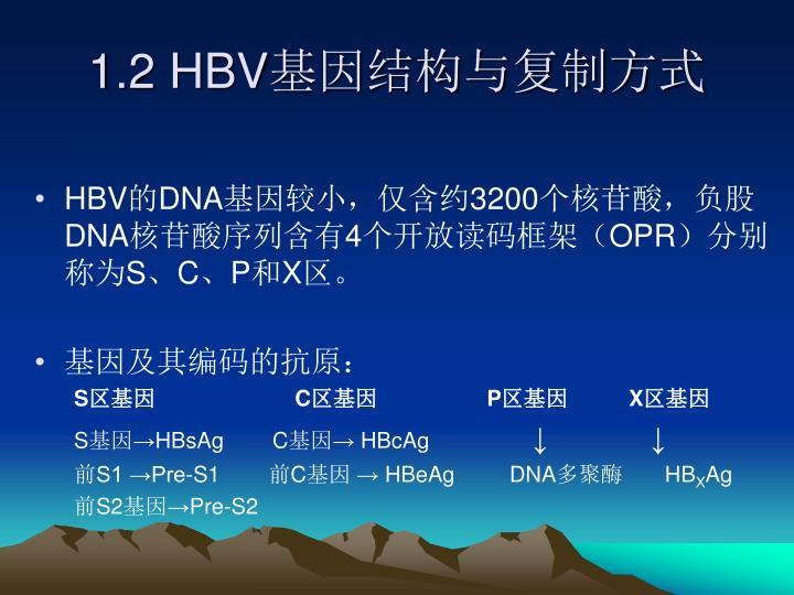 1.2 HBV