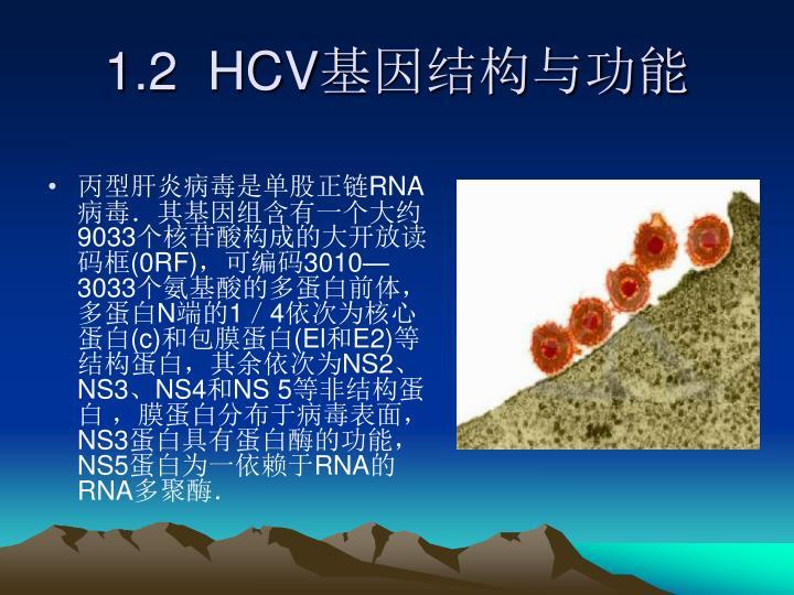1.2  HCV