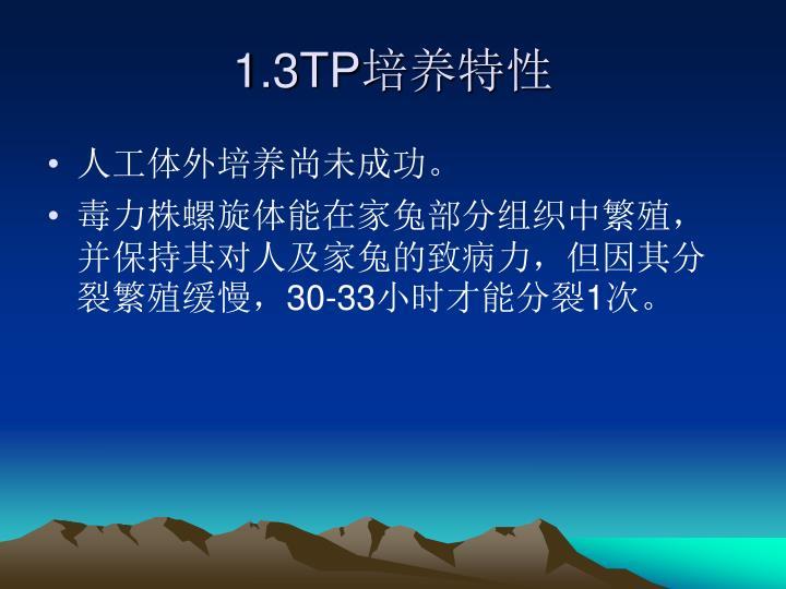 1.3TP