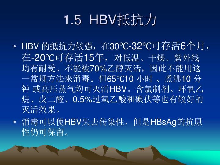 1.5  HBV