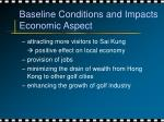 baseline conditions and impacts economic aspect