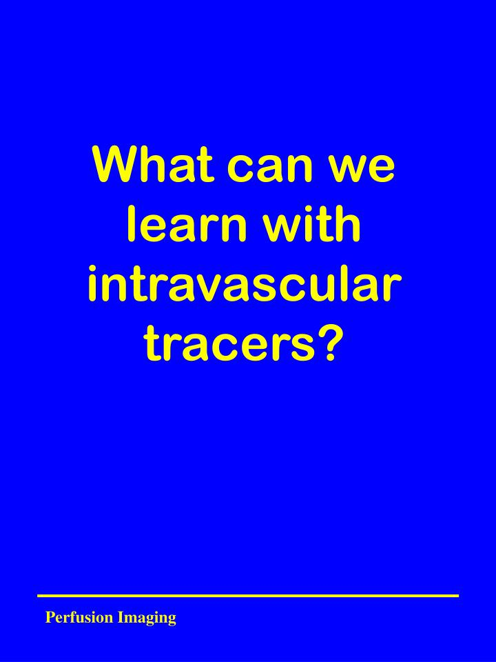 what can we learn with intravascular tracers n.