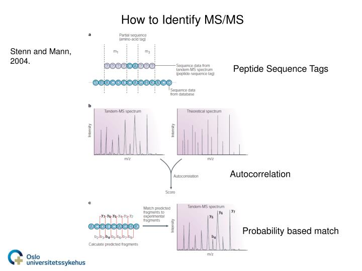 How to Identify MS/MS