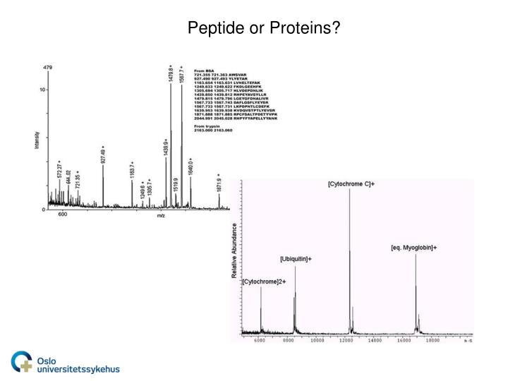 Peptide or Proteins?