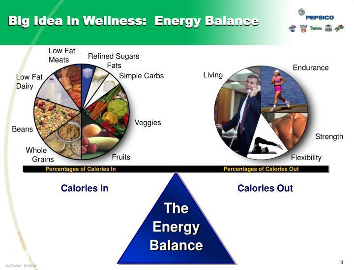 Big idea in wellness energy balance