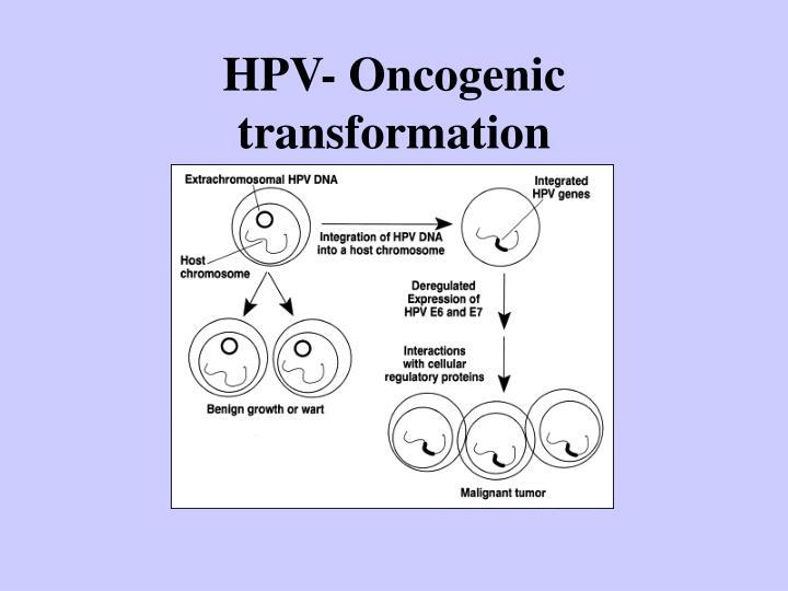 HPV- Oncogenic transformation