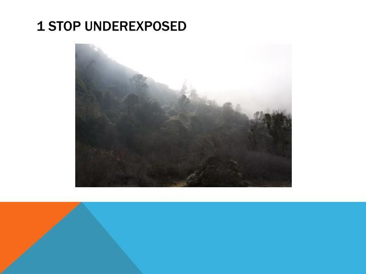 1 STOP UNDEREXPOSED
