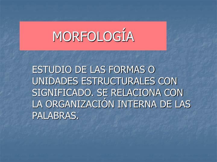 morfolog a n.