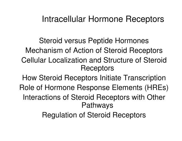 intracellular hormone receptors