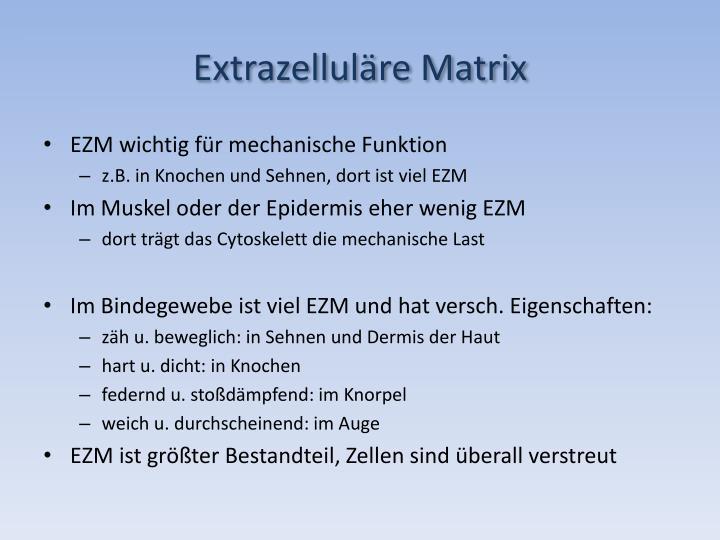 Extrazellul re matrix