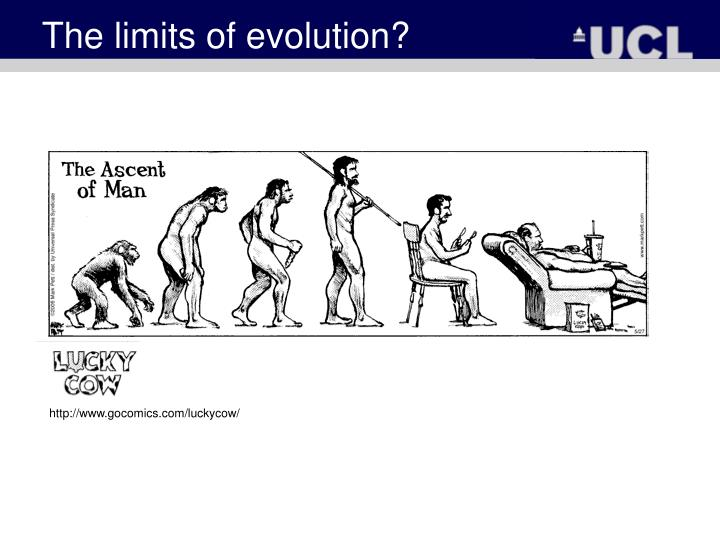 The limits of evolution?
