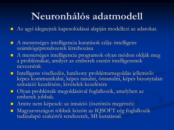 Neuronhálós adatmodell