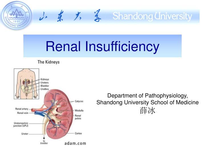 renal insufficiency n.