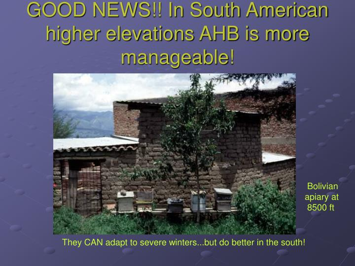 GOOD NEWS!! In South American higher elevations AHB is more manageable!