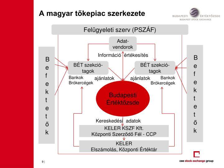 A magyar tőkepiac szerkezete