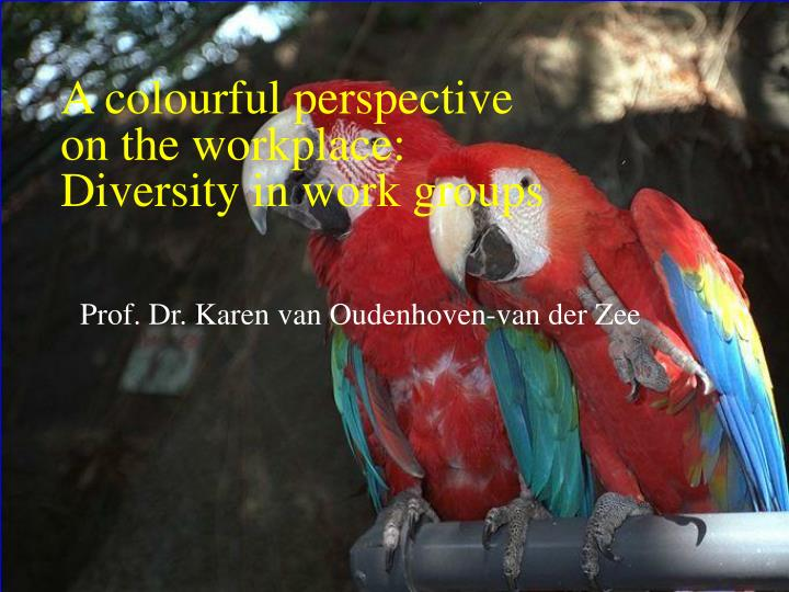 a colourful perspective on the workplace diversity in work groups n.