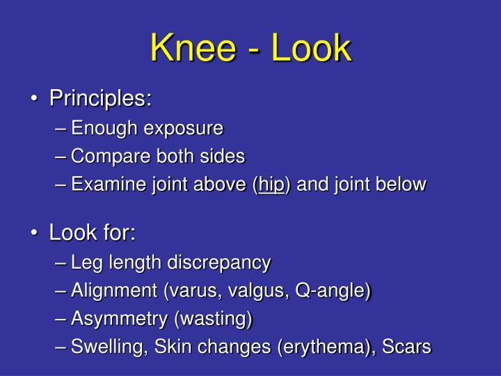 Knee - Look