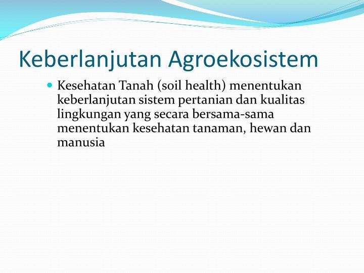 Keberlanjutan Agroekosistem