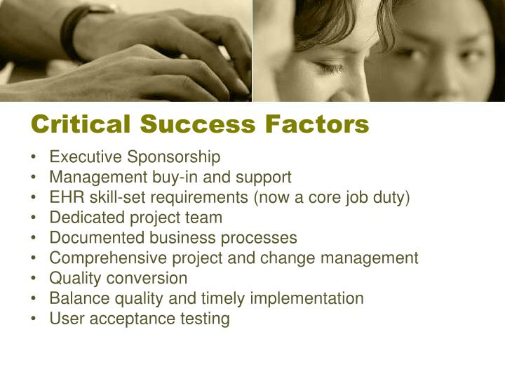 schmidt co a case critical success factors Organizations is crucial for success in global business environments i would like to findthe success factors through the academic approach  and the practical approach .