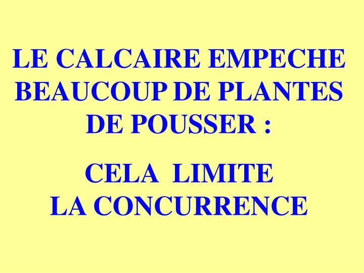 LE CALCAIRE EMPECHE BEAUCOUP DE PLANTES DE POUSSER :
