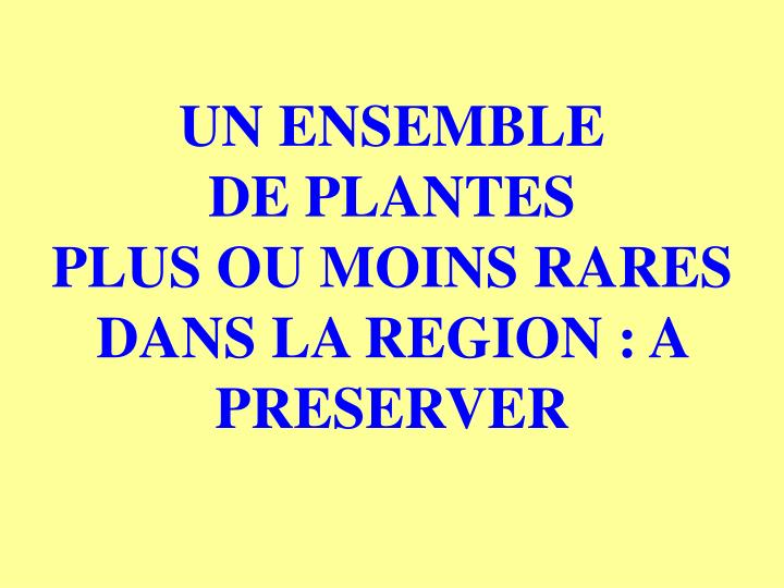 UN ENSEMBLE                  DE PLANTES                  PLUS OU MOINS RARES DANS LA REGION : A PRESERVER
