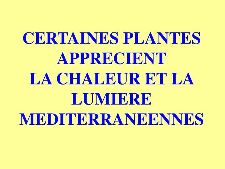 CERTAINES PLANTES APPRECIENT             LA CHALEUR ET LA LUMIERE MEDITERRANEENNES