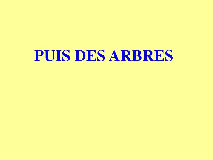 PUIS DES ARBRES