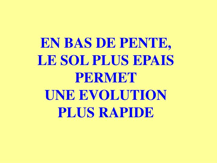EN BAS DE PENTE, LE SOL PLUS EPAIS PERMET                UNE EVOLUTION        PLUS RAPIDE