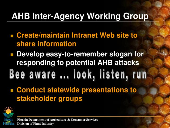 Create/maintain Intranet Web site to share information