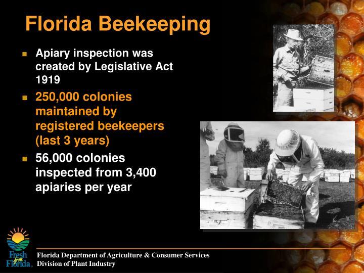 Florida Beekeeping