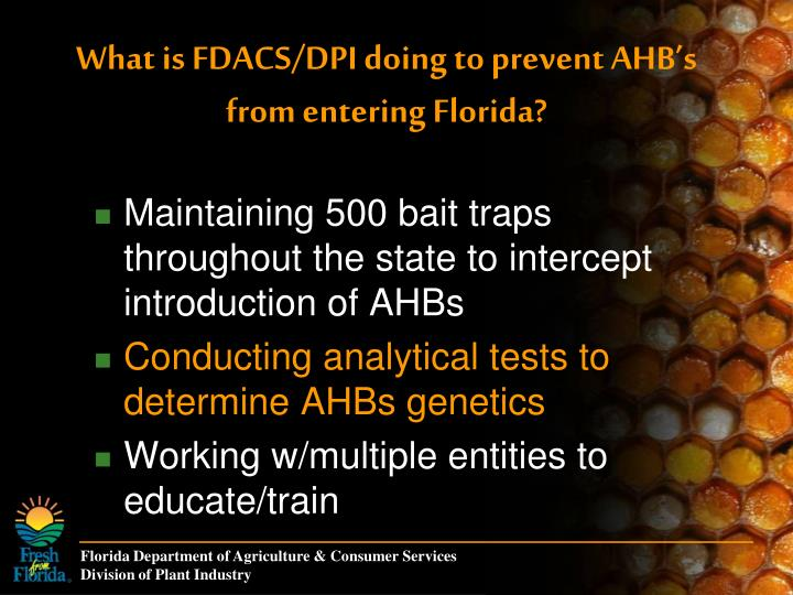 What is FDACS/DPI doing to prevent AHB's