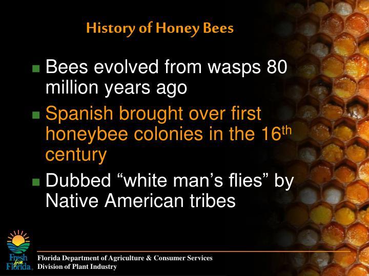 History of Honey Bees