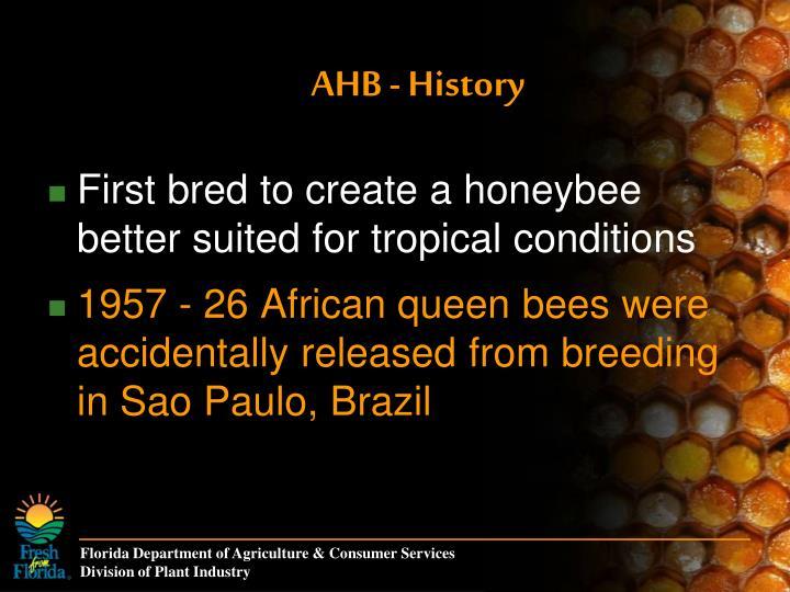 AHB - History