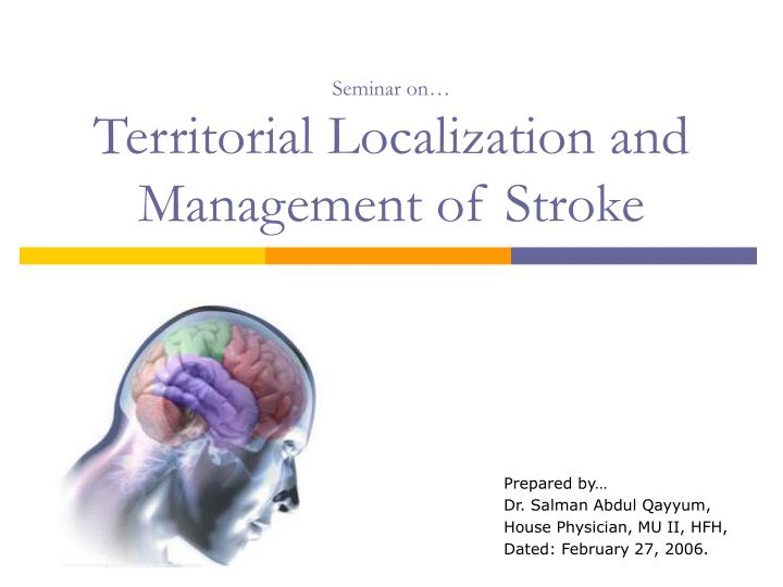 seminar on territorial localization and management of stroke n.