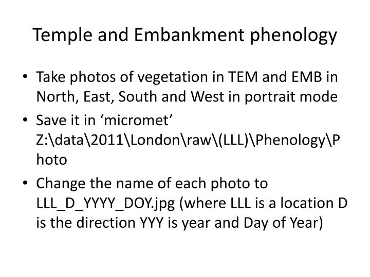 Temple and embankment phenology