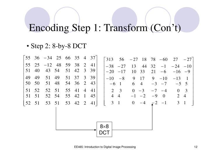 Encoding Step 1: Transform (Con't)